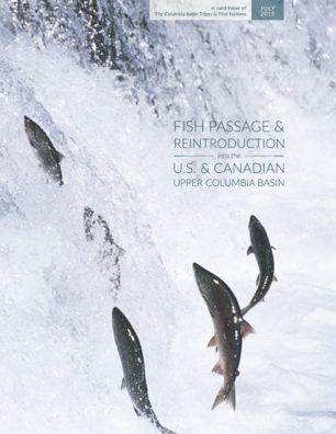 fish_passage